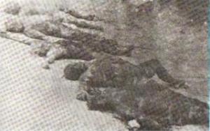 Turkmen martyr5
