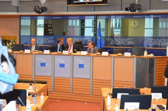 Martin Kobler at EU Parl 29 May 2013 013