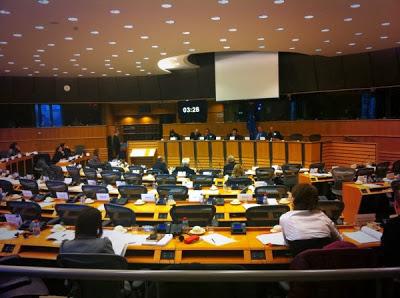 hearing on Iraqi Turkmen at EU Parl on 27 NOV 2013